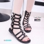 พร้อมส่ง รองเท้าแตะส้นเตี้ยสีดำ หนังนิ่ม สไตล์ Gladiater Sandals แฟชั่นเกาหลี [สีดำ ] thumbnail 1