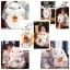 ตุ๊กตาหนูแฮมสเตอร์ Hamster ขนาด 40 cm. thumbnail 1
