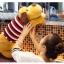 ตุ๊กตาสุนัข หมอนข้าง (ใส่เสื้อลายสีแดง) ขนาด 90 cm. thumbnail 4