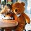 ตุ๊กตาหมีตัวใหญ่ ผูกโบว์ สีน้ำตาล ขนาด 80 cm. thumbnail 1