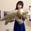 ตุ๊กตาจระเข้ สีเทา ขนาด 65 cm. (Pre-Oreder) thumbnail 1